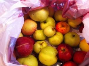 æbler pose