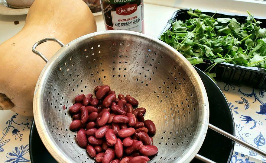 Proteinkilde-mix med oksekød og bønner